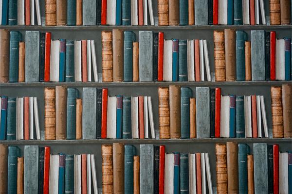 Vários livros colocados em prateleiras, simbolizando o marketing de conteúdo, um dos nossos serviços.