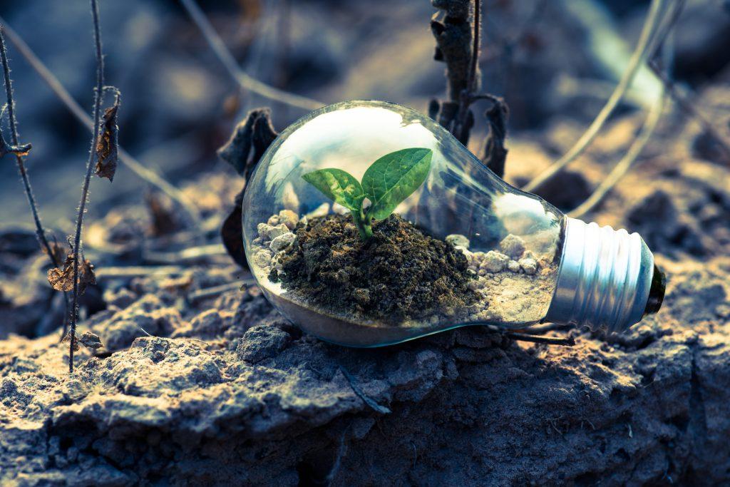 A imagem contém uma lâmpada contendo dentro uma folha verde. Significando proteção do meio ambiente, já que a Glow Up é uma empresa verde.